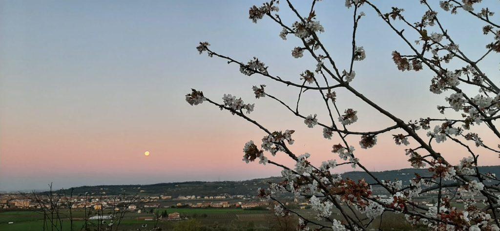 paesaggio alba con super luna