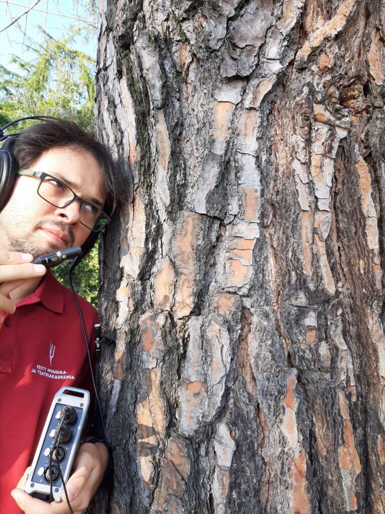 Peter Bajetta recording a tree
